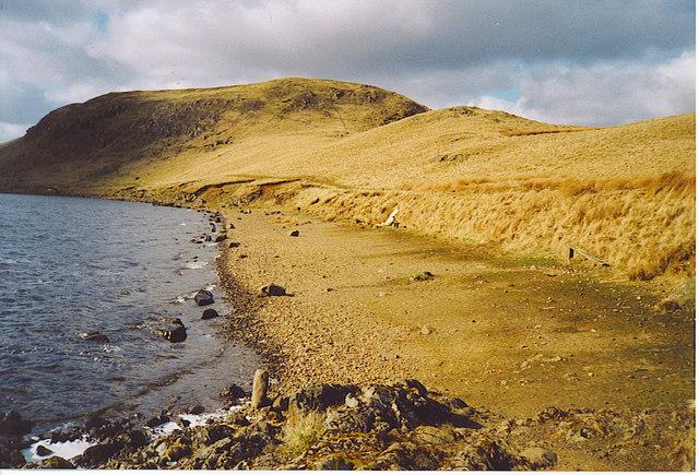Loch Glow Shoreline - geograph.org.uk - 163038