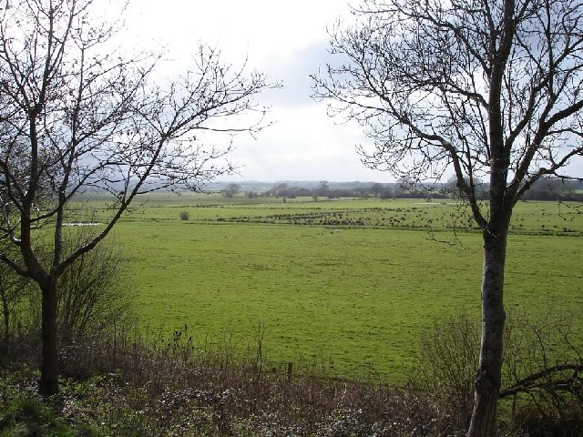 Meadows near the River Adur - south of Henfield - geograph.org.uk - 39743