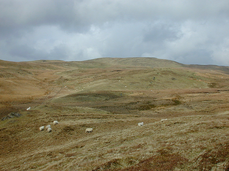 File:Moorland south of Llan Ddu Fawr - geograph.org.uk - 658617.jpg