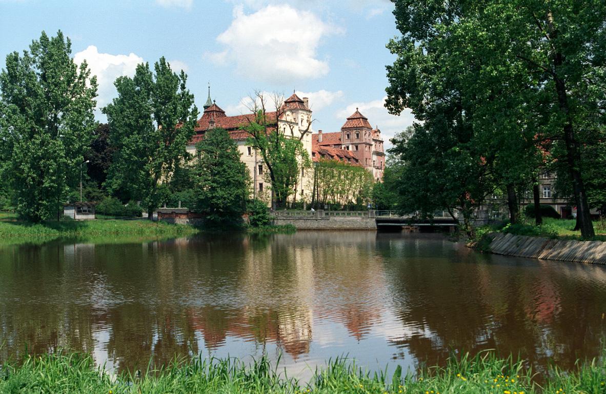 zamek z 1313 r Shawn Johnson i Ryan Edwards spotykają się