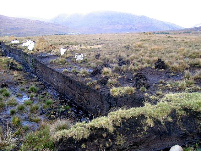external image Peat-bog-Ireland.jpg
