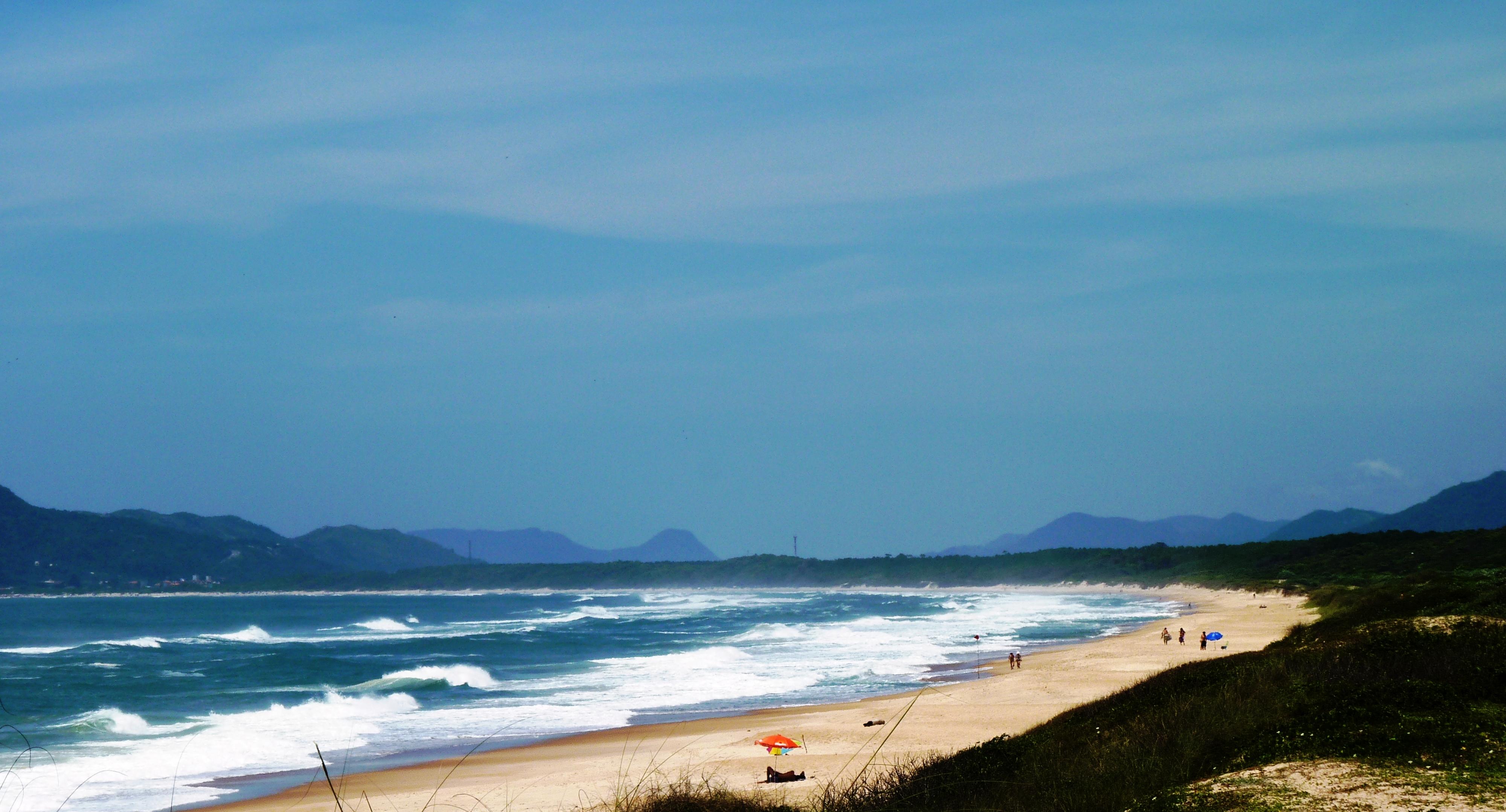 praia do moçambique em florianópolis, destino de surf