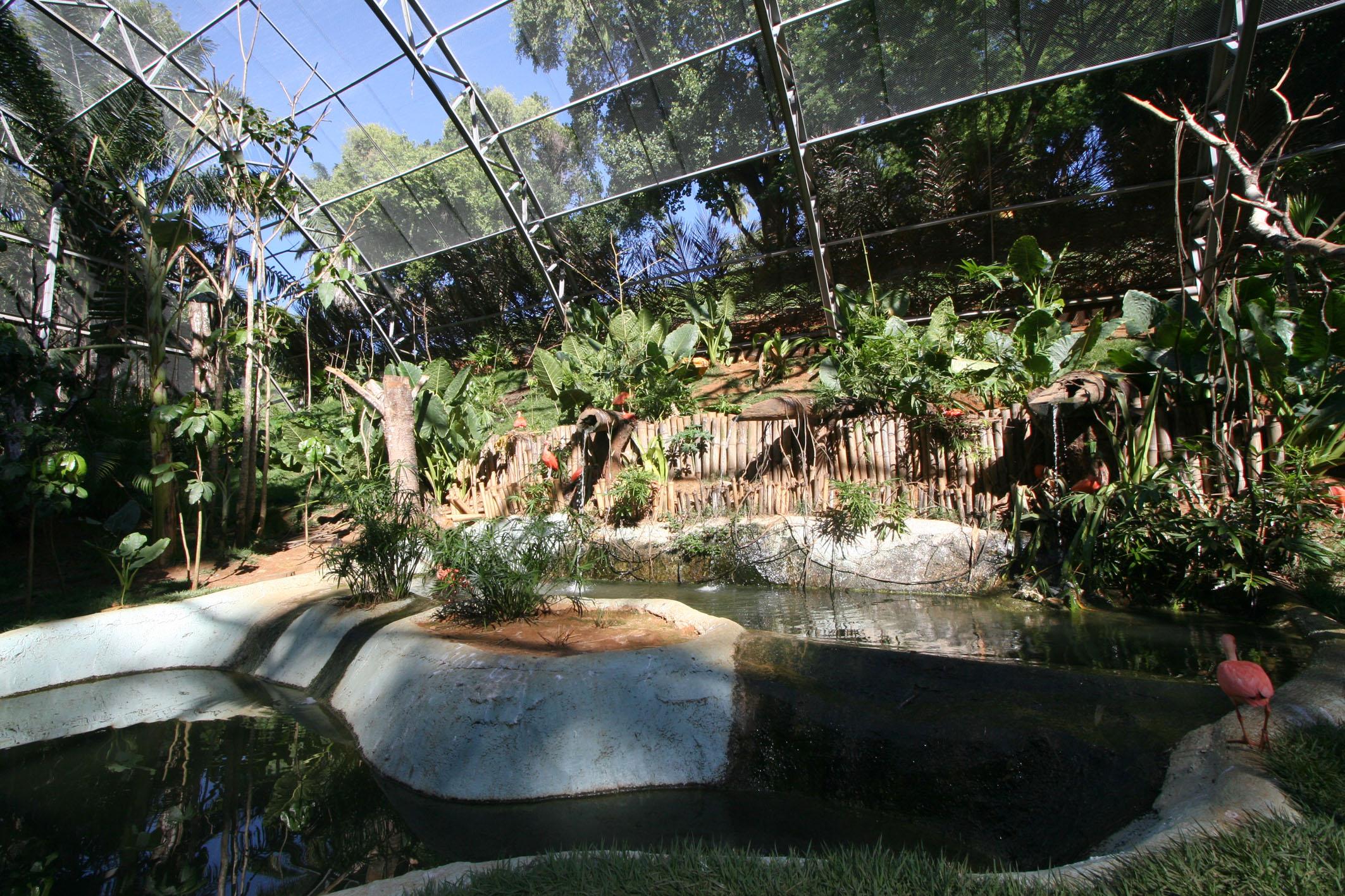 File Salvador Zoo Ondina Salvador Bahia Brasil Aviary