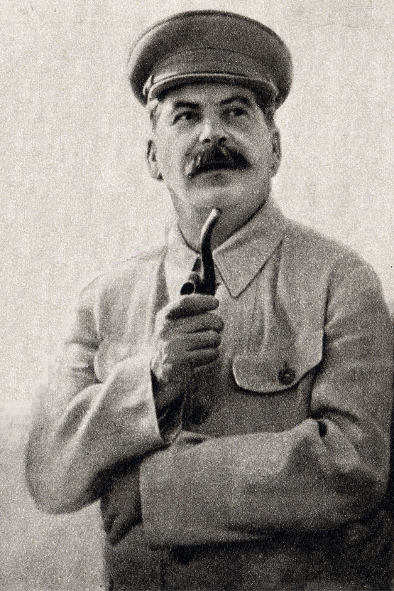 Joseph Stalin Wikipedia The lifestyle is extremely unhealthy, sedentary. joseph stalin wikipedia