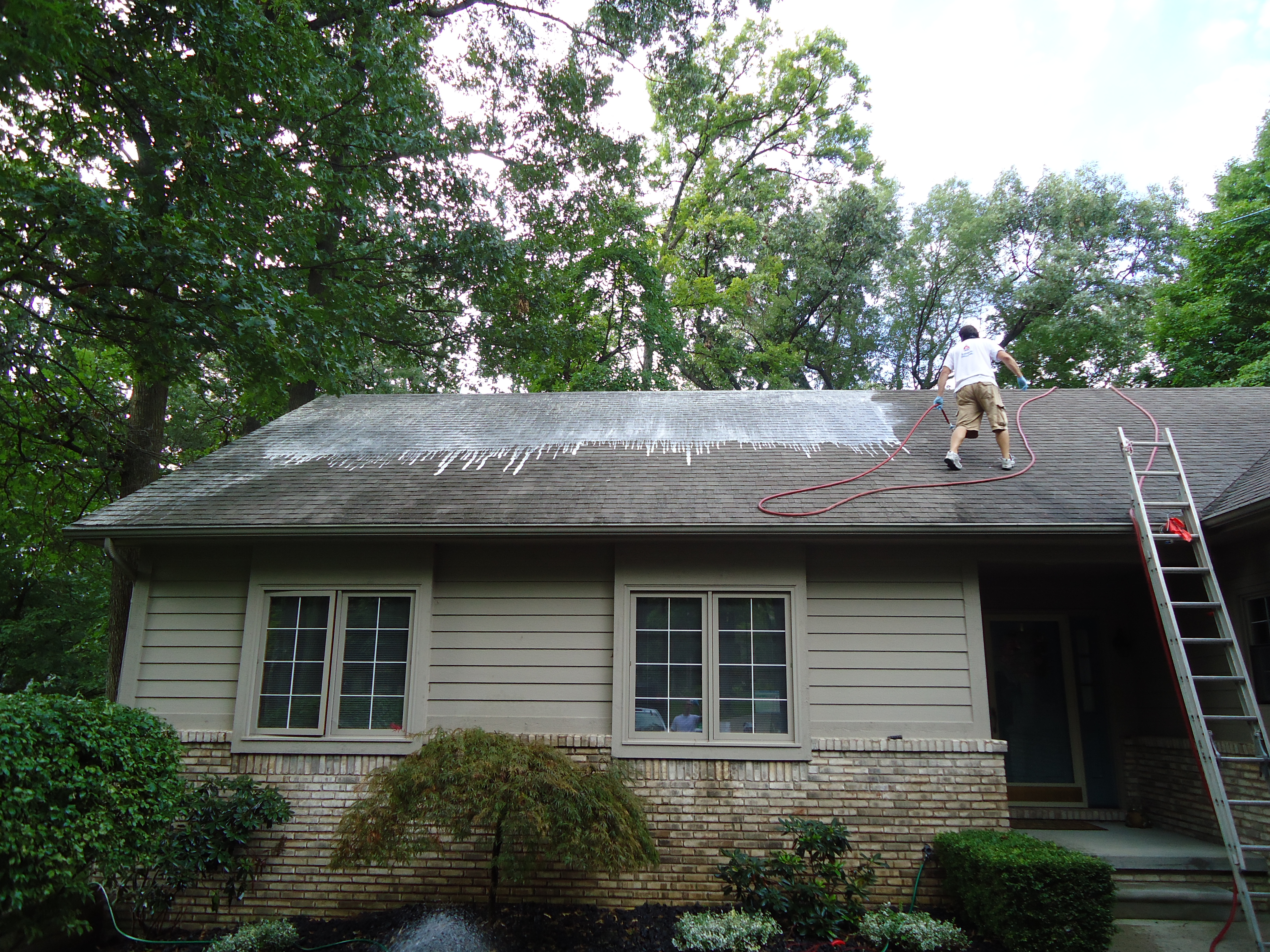 Roof cleaning - Wikipedia