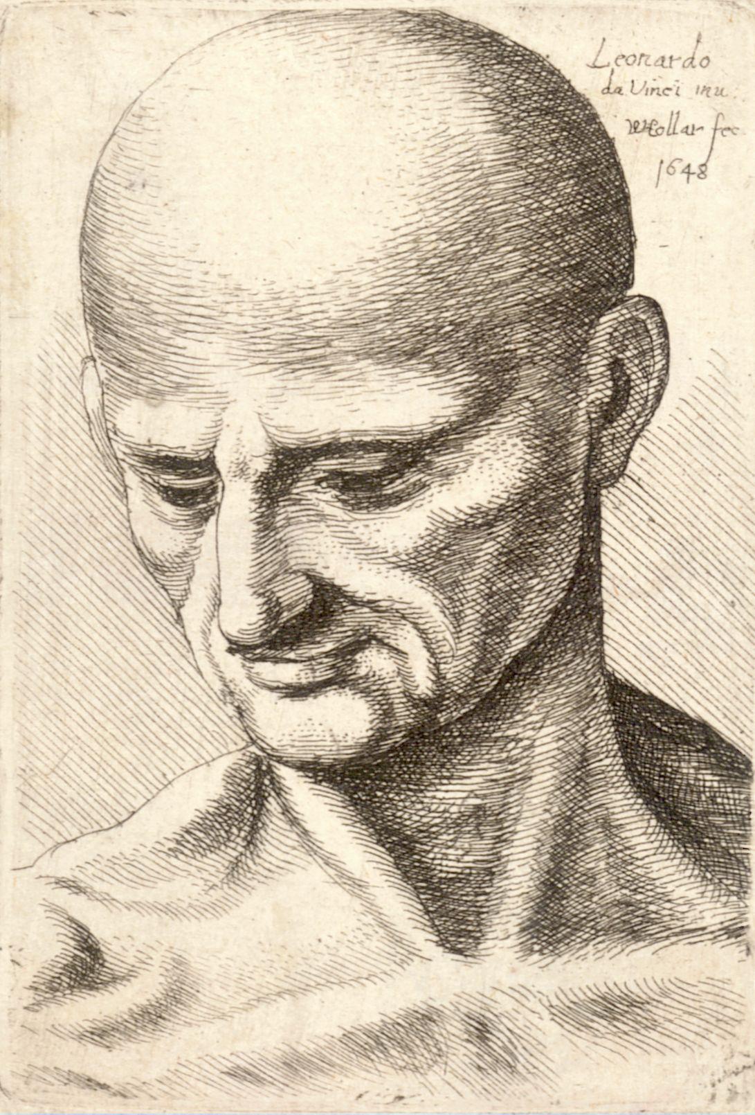File Wenceslas Hollar Bald Elderly Man Looking Down Jpg Wikimedia Commons