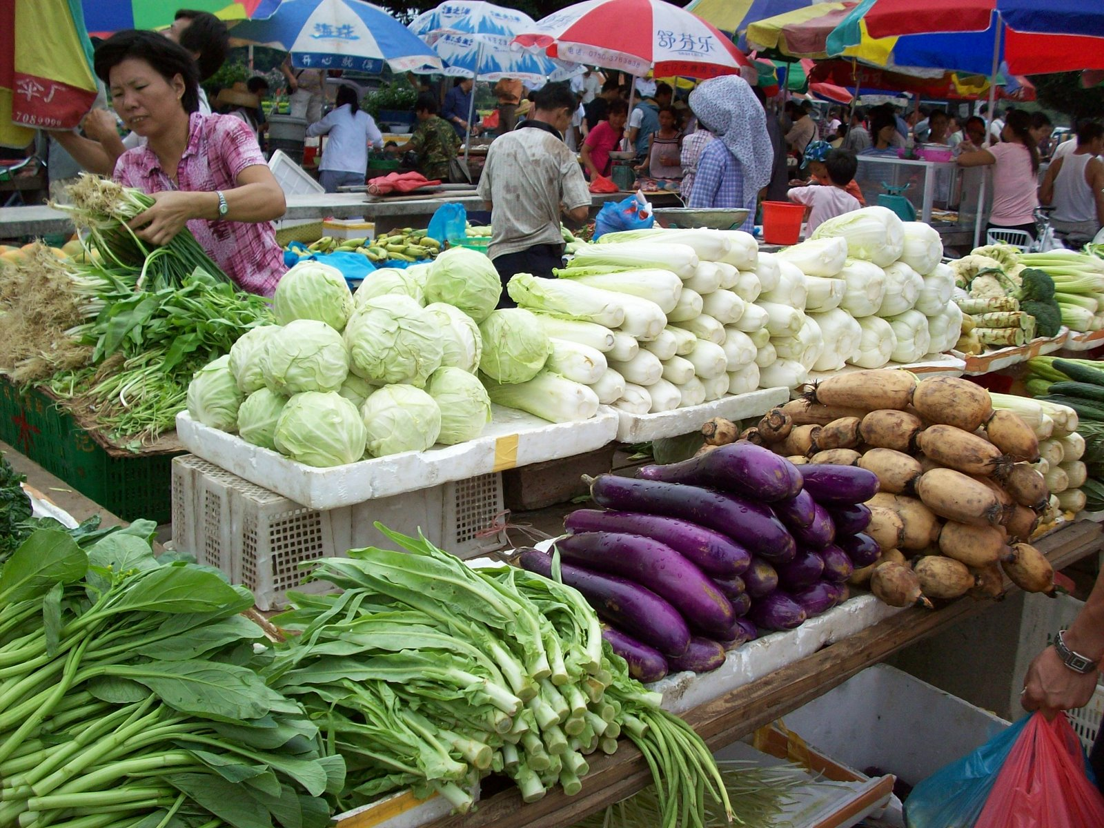 vegetable market Value accounting companies had to show these investment at market value  meaning balance sheet is wiped out and all this unrealized loss.