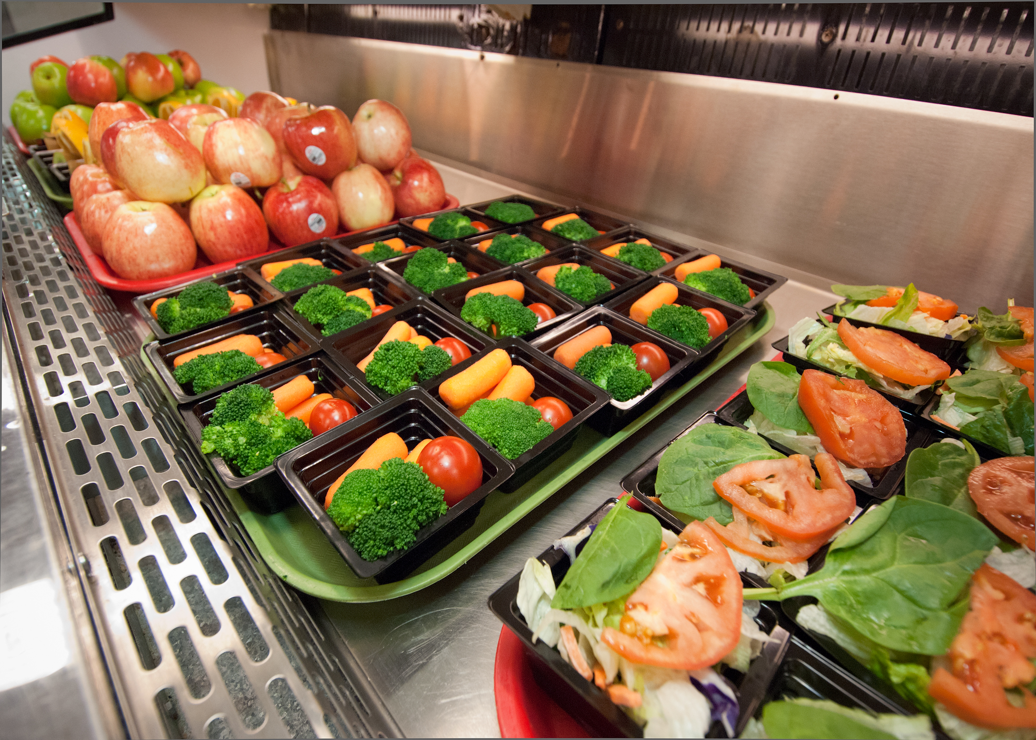 Sample Essay on Healthy School Lunches in America