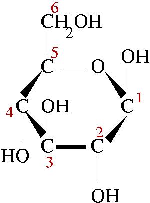 Alpha d glucose structure