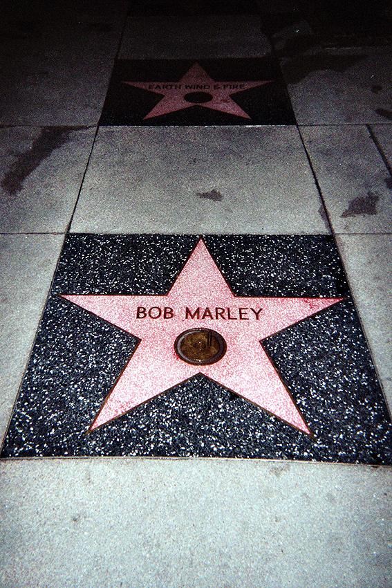 El rey : Bob Marley