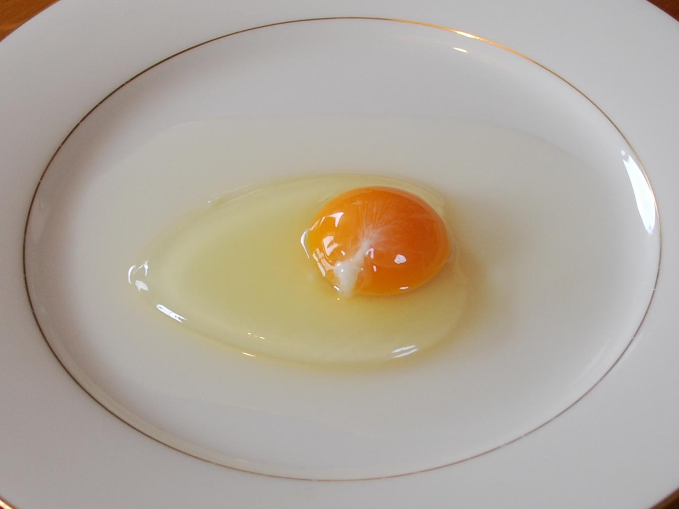 Egg White Wikipedia
