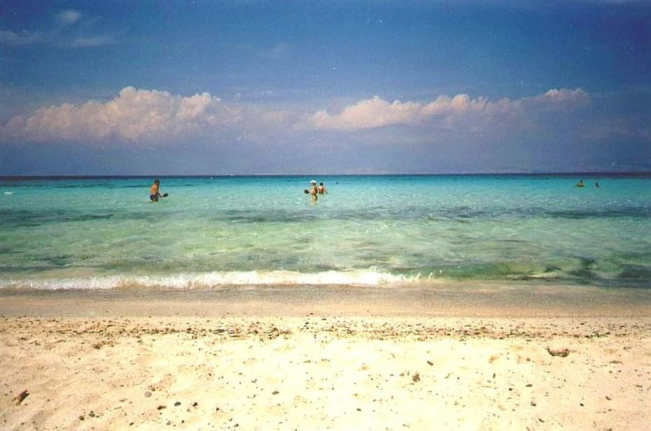 The Island Saison  Scene Hot