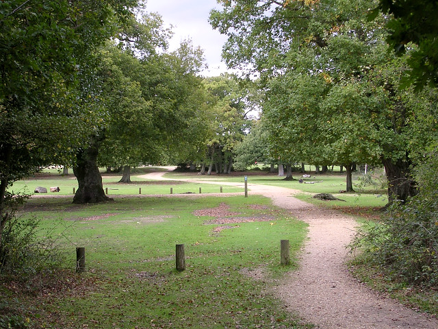 Cycle path entering Ashurst campsite from Ashurst Wood, New Forest - geograph.org.uk - 68773