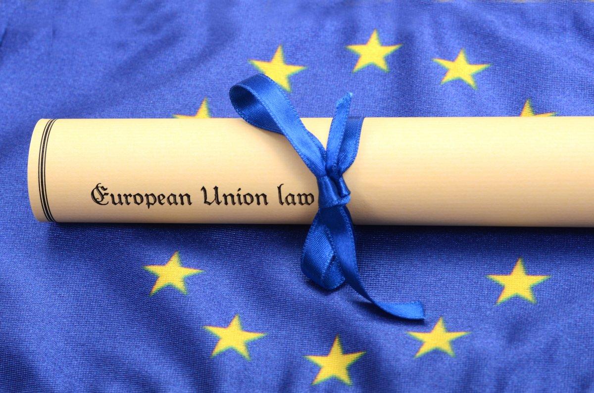 Ditektiiv EL õiguses.jpg