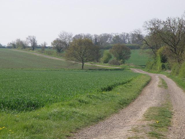 Farm track through Highfield farm - geograph.org.uk - 1278259