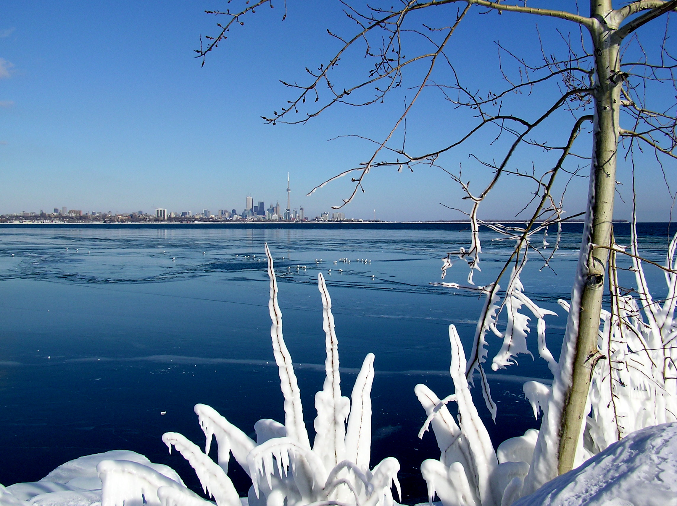 Kanada - Page 3 Frozen_lake_toronto