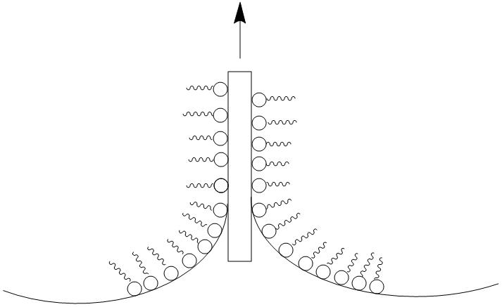 Langmuir-Blodgett technique