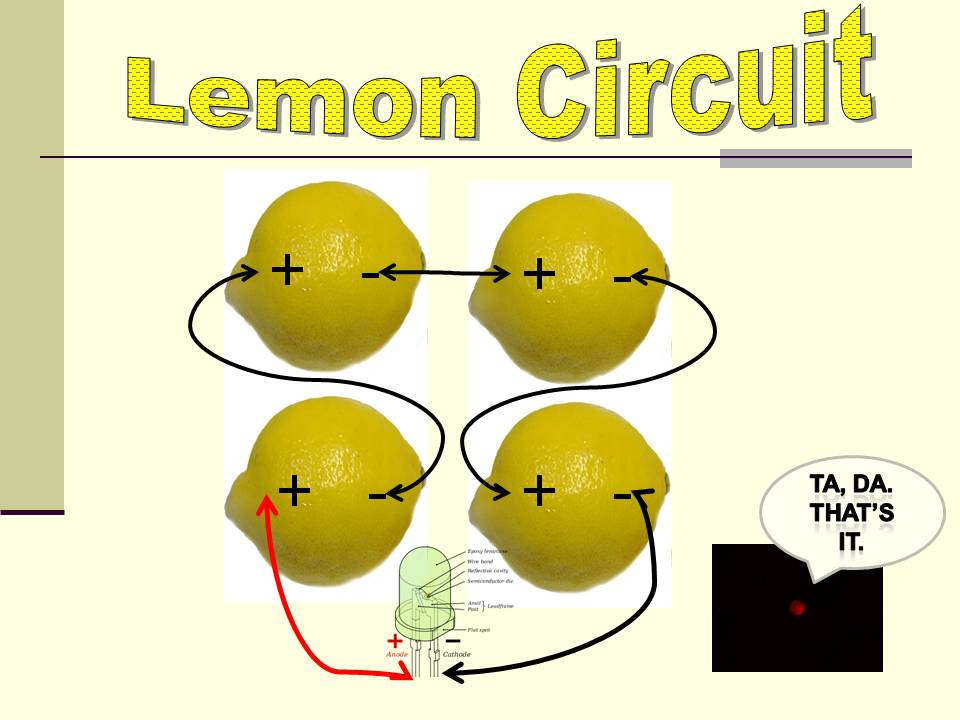 a creative approach to using food in the classroom making a lemon rh creativefoodintheclasroom blogspot com Lemon Battery Chart How Does a Lemon Battery Work