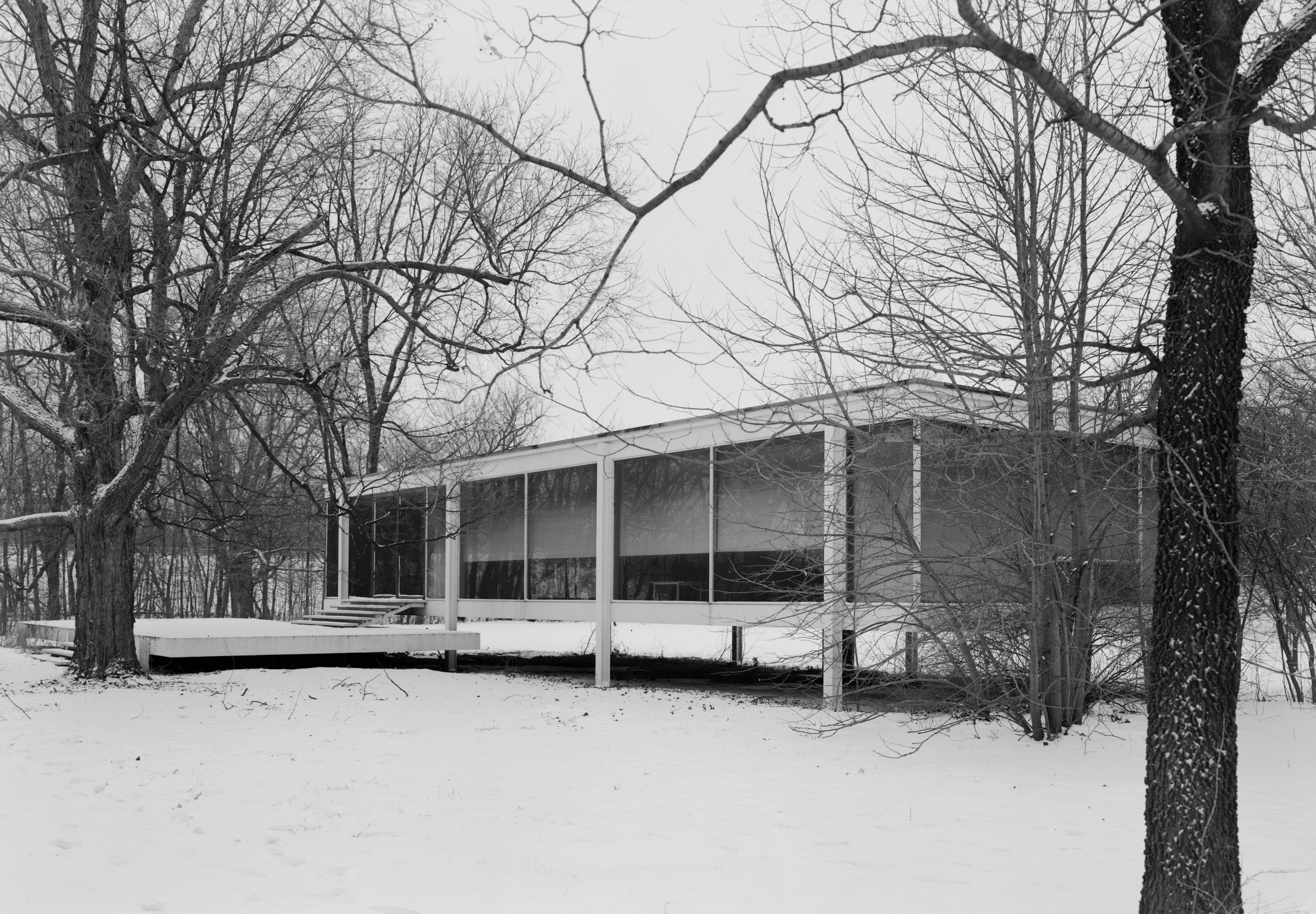 mies van der rohe photo farnsworth house plano usa. Black Bedroom Furniture Sets. Home Design Ideas