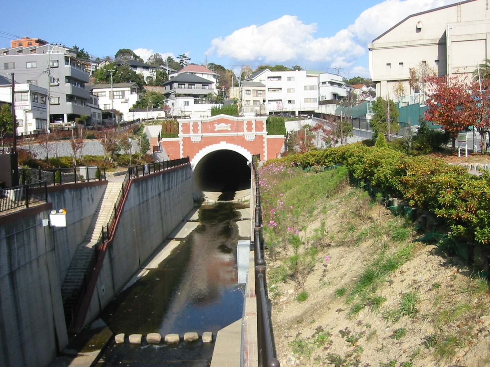 湊川 2005年12月3日撮影