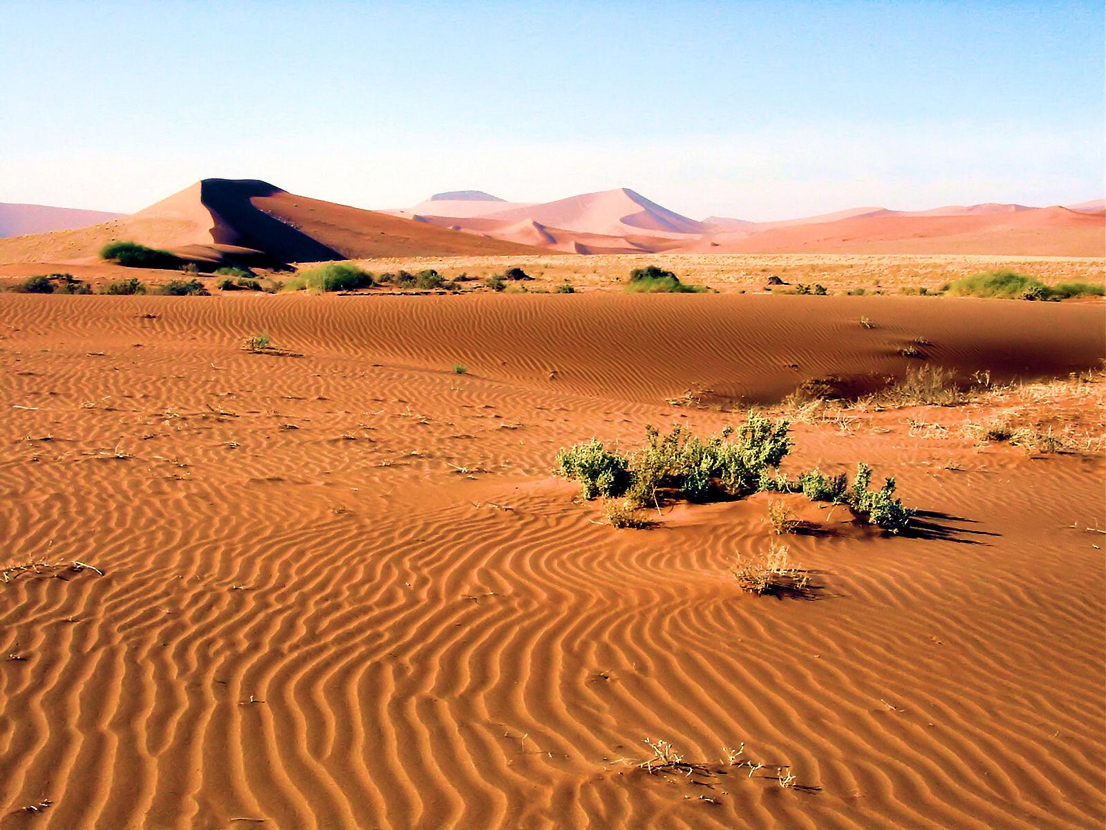 Natural Resources In The Kalahari Desert