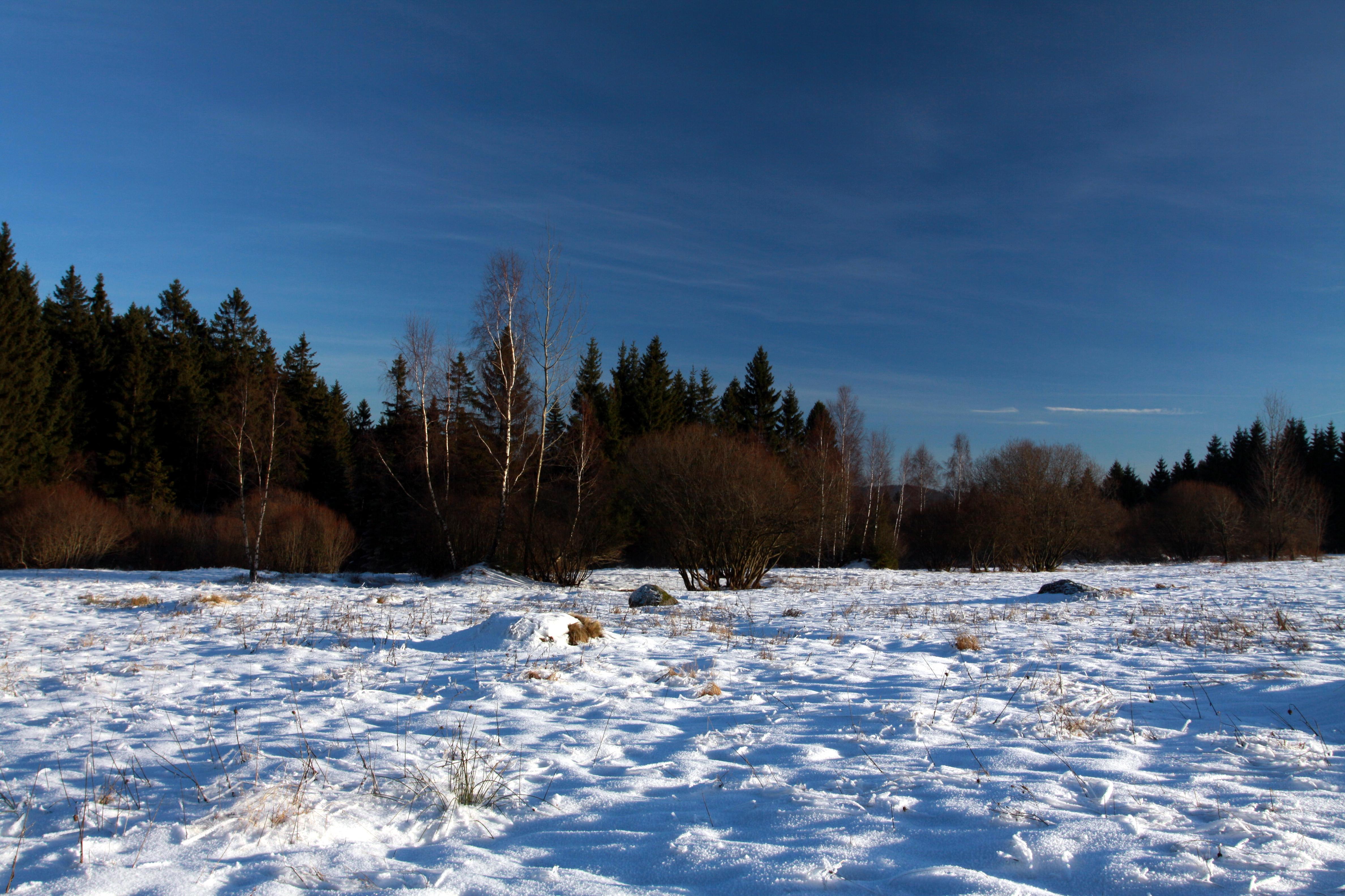 Winter V Natural Resources Defense Council Quimbee
