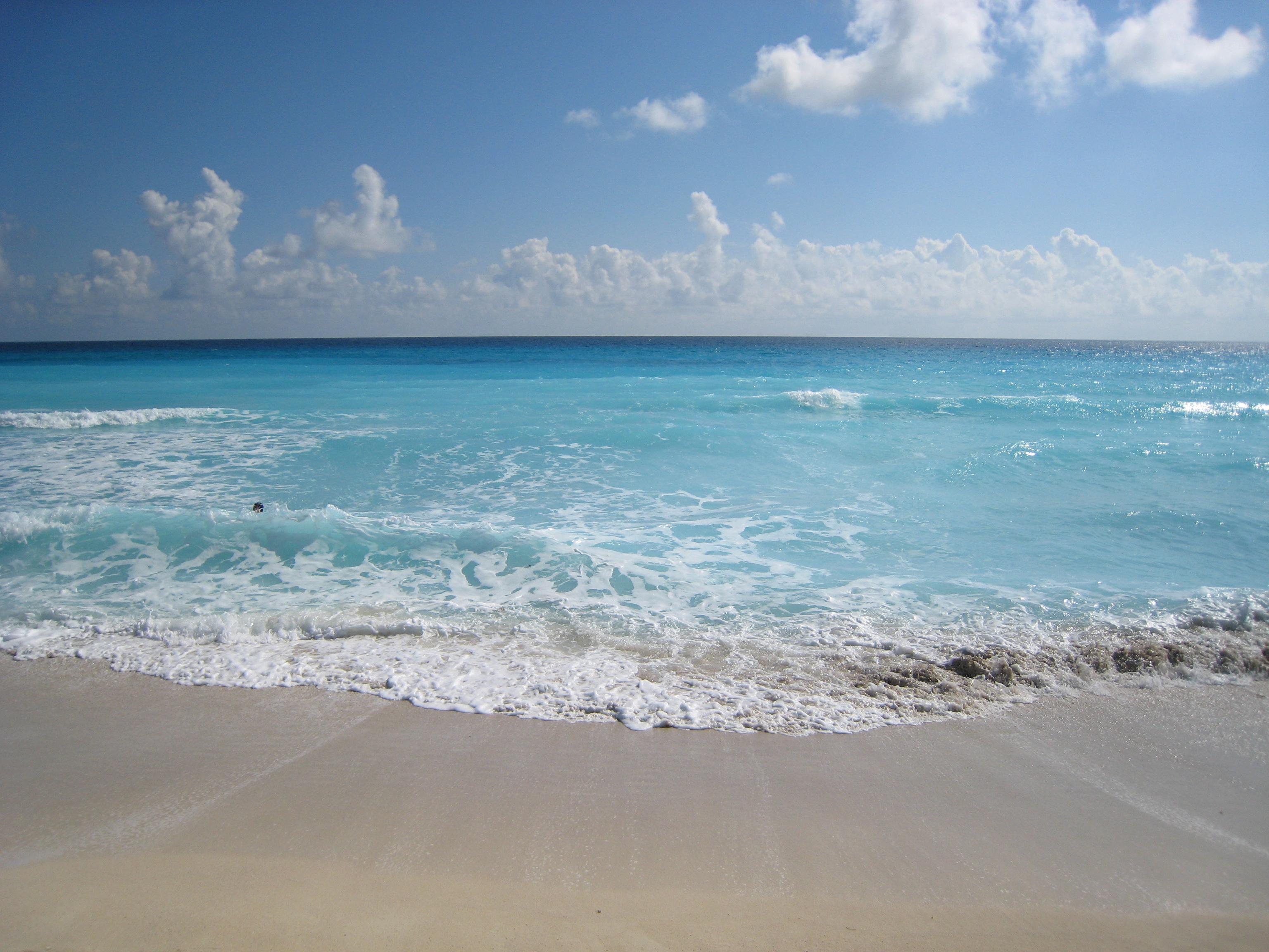 Snorkeling From Beach Beachcomb Island Fiji