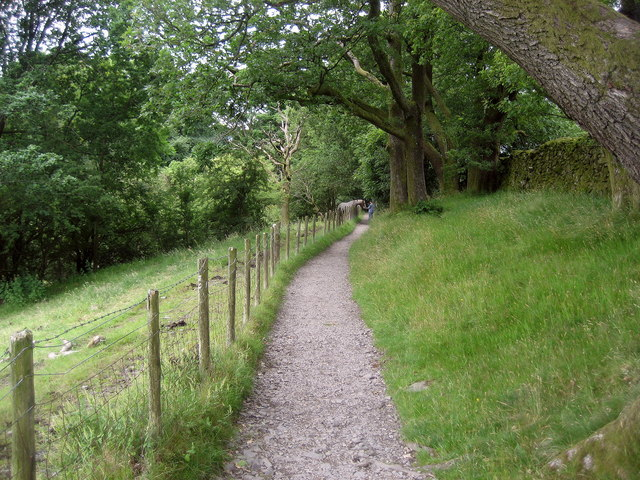 Path from Orrest Head - geograph.org.uk - 1398774
