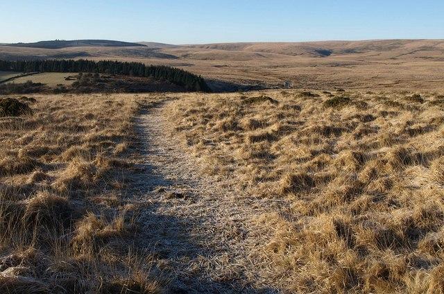 Path on Scorhill Down - geograph.org.uk - 1710668