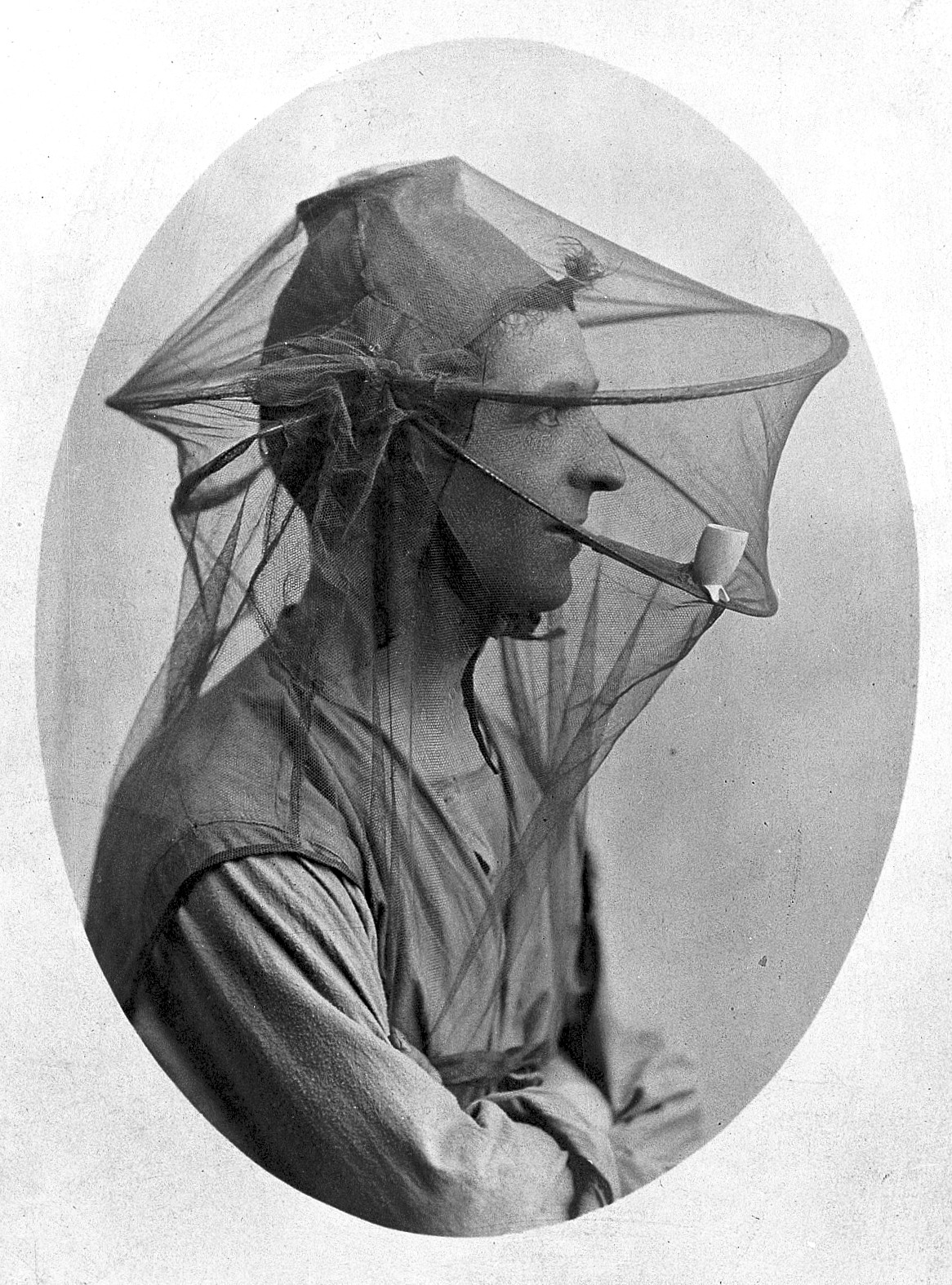 File Postcard Mosquito Net To Be Worn As A Veil Wellcome