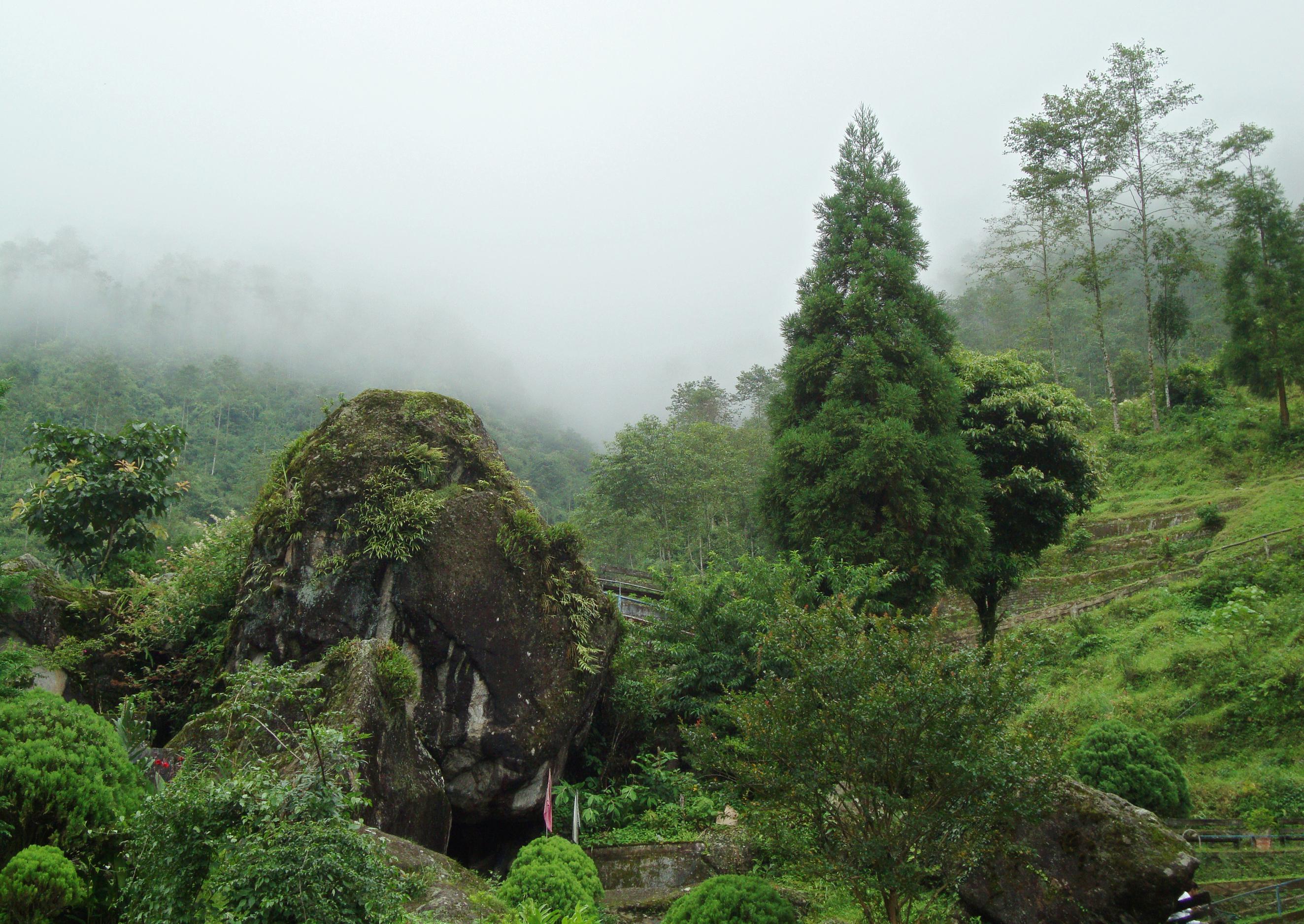Garden in august in a garden - File Rock Garden Darjeeling At Mist Jpg