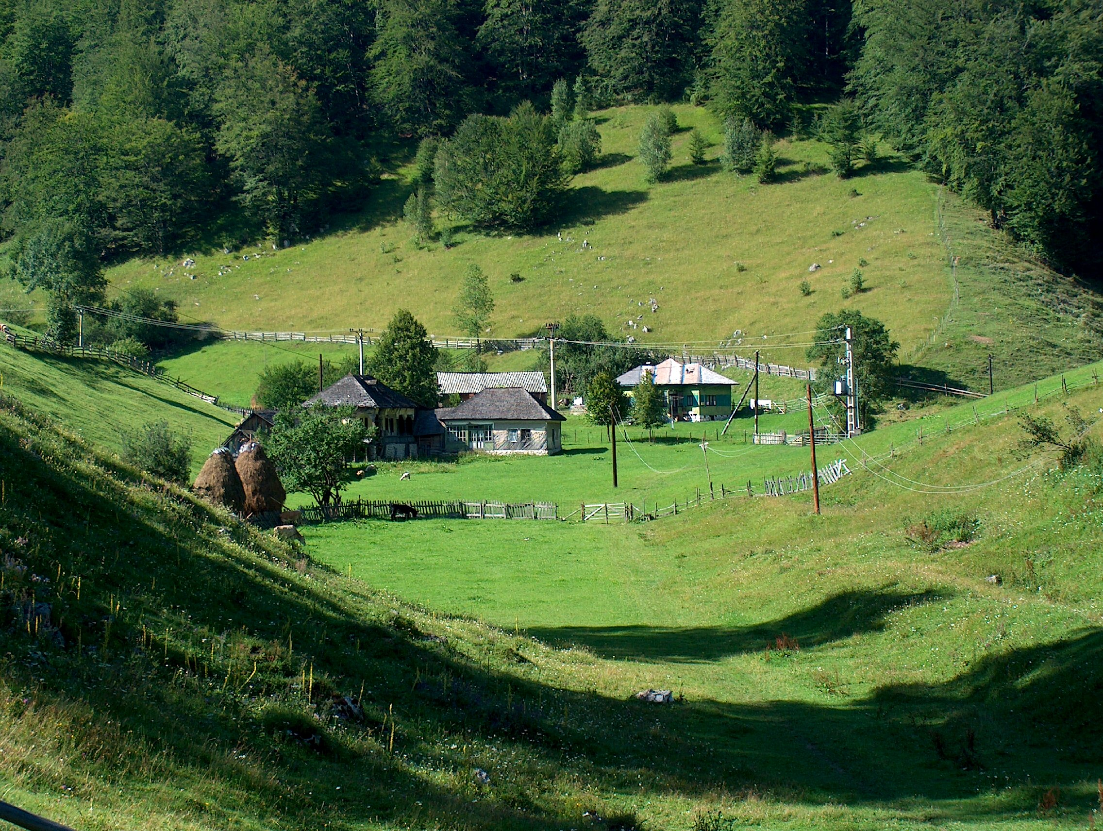 Romanian landscape blume language and culture learning for Romania landscape