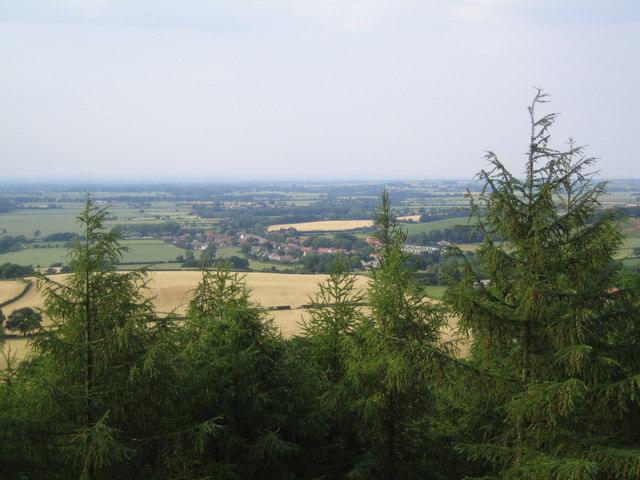 Swainby seen from the viewpoint in Clain Wood - geograph.org.uk - 195223