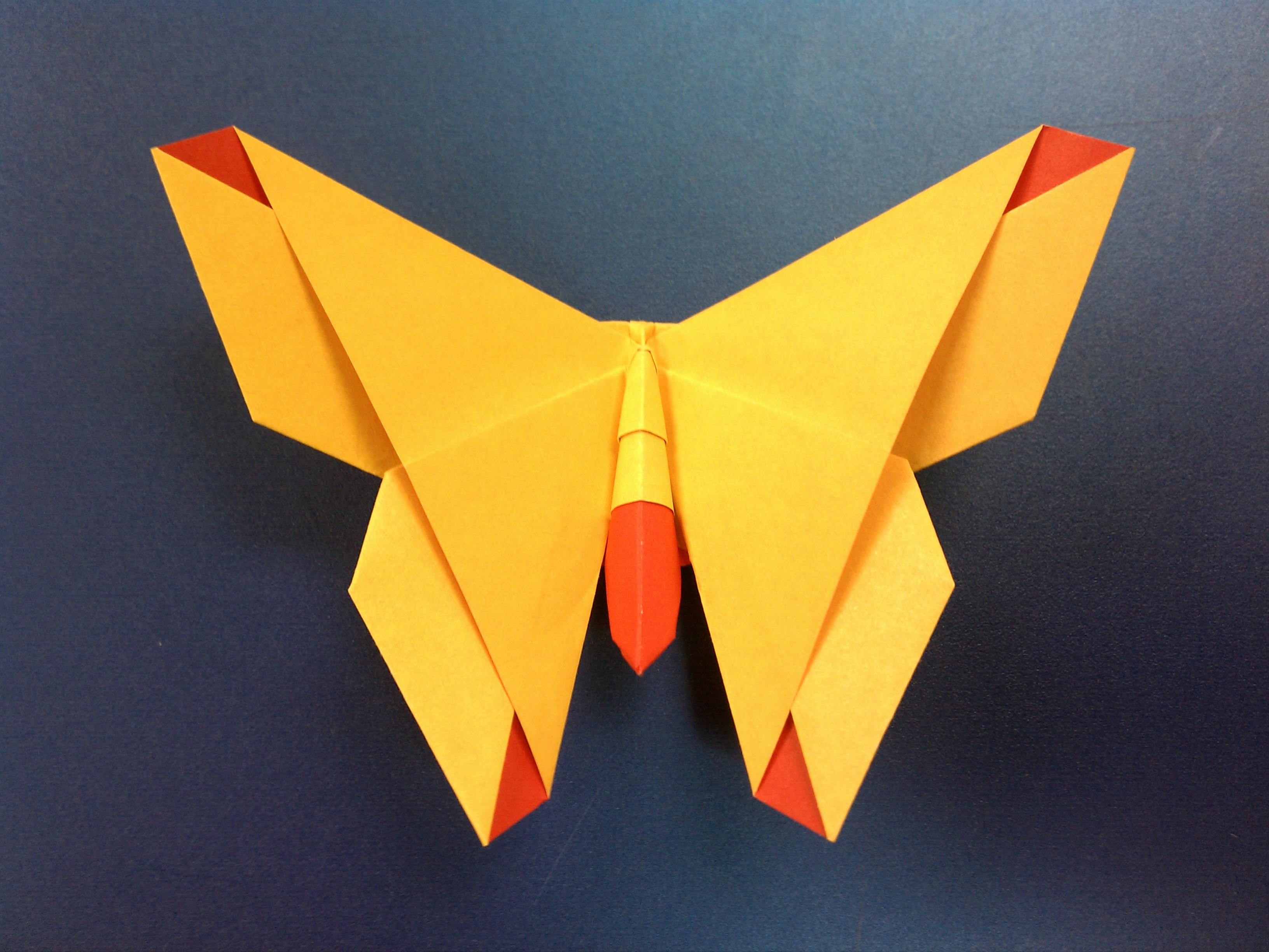 Tiedosto:The Alice (origami butterfly).jpg – Wikipedia - photo#43