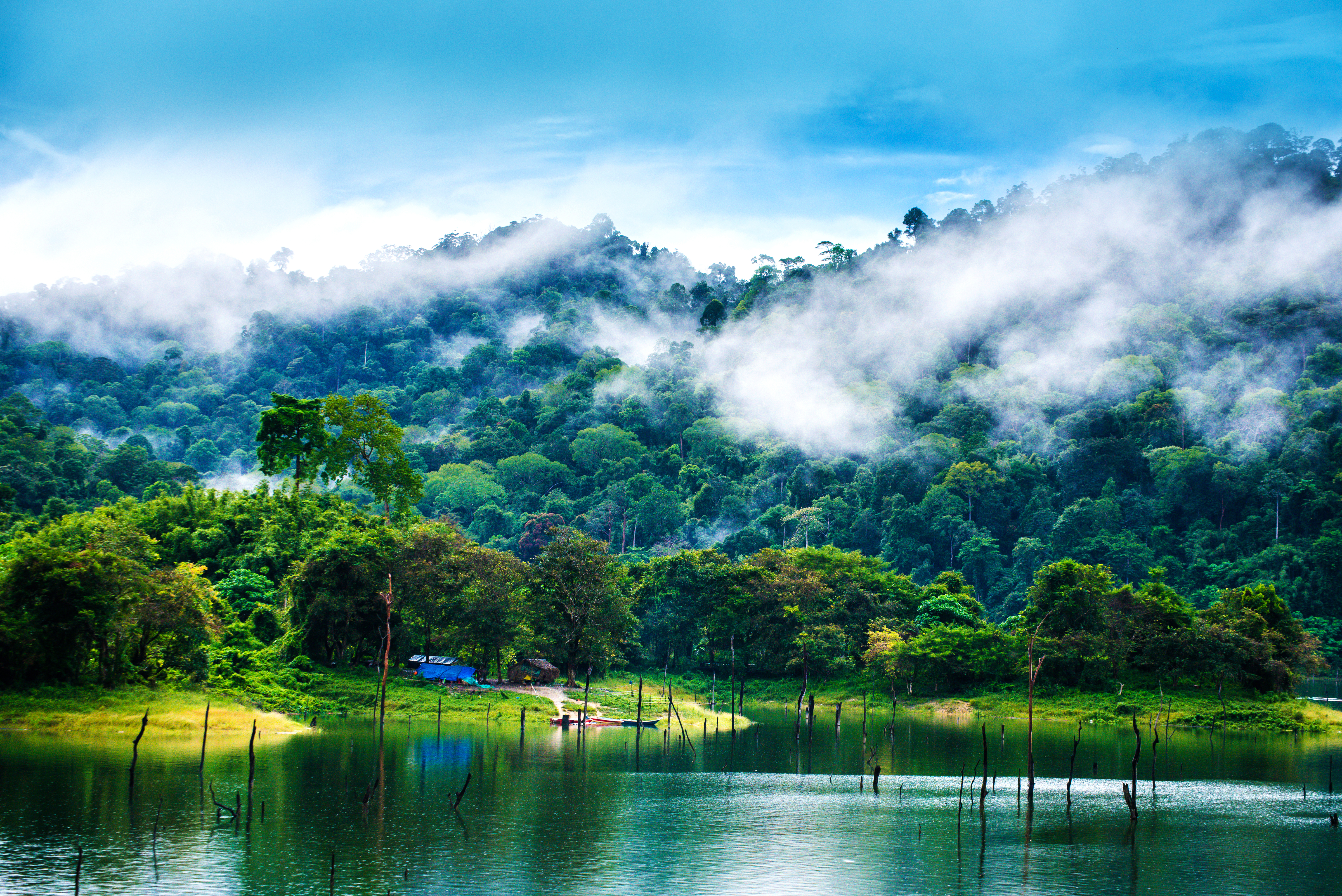 Taman Negeri Royal Belum Wikipedia Bahasa Melayu Ensiklopedia Bebas