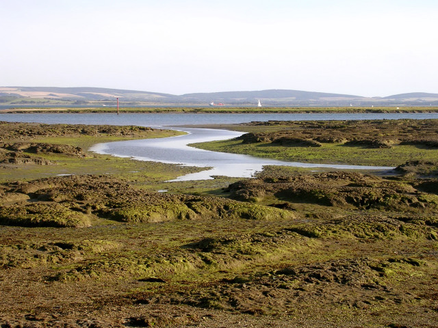Tidal mudflats near Inchmery House, Lower Exbury - geograph.org.uk - 33289