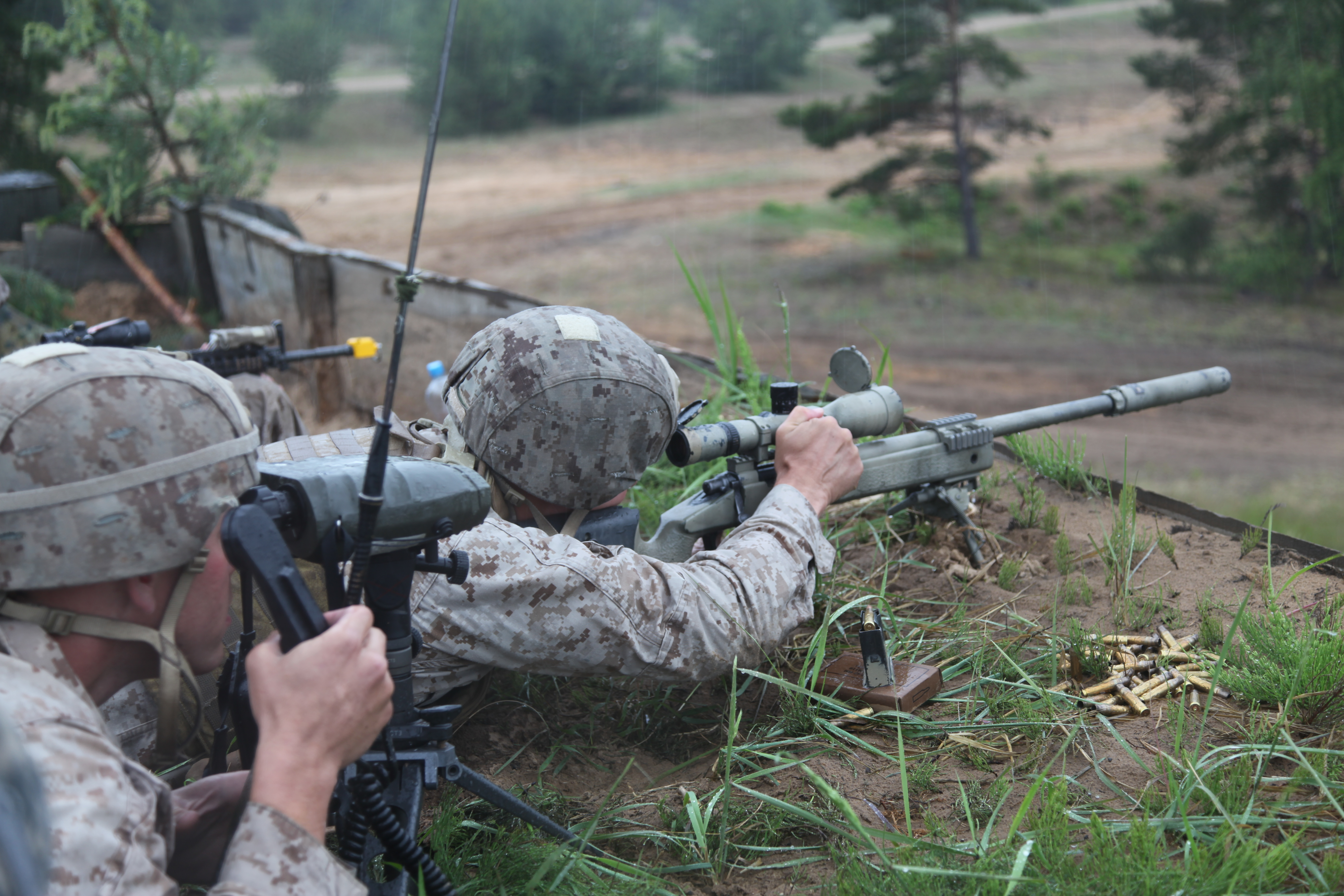 marines scout sniper requirements