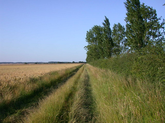Wimpole Way near Kingston - geograph.org.uk - 896035