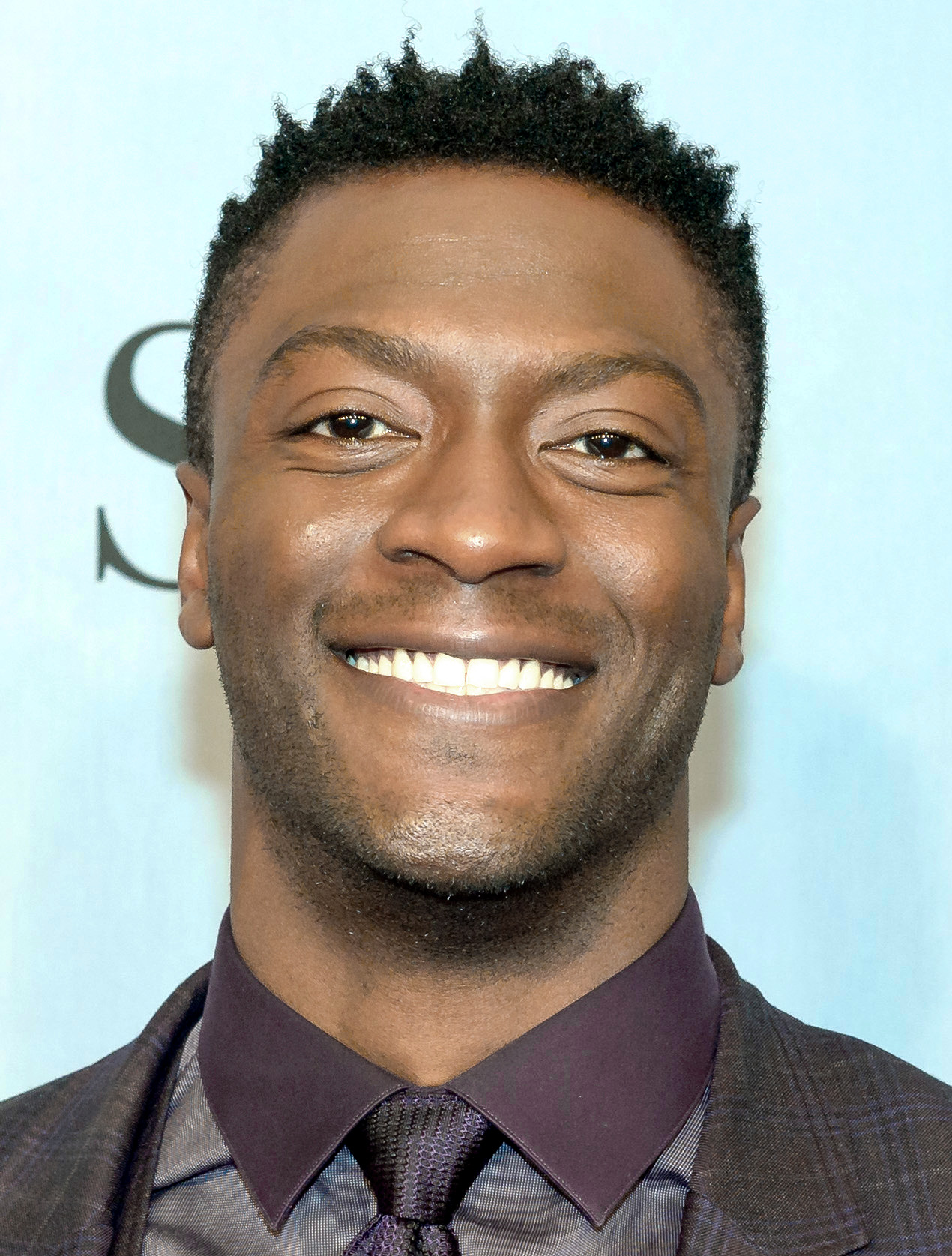 The 32-year old son of father Aldis Hodge and mother Yolette Evangeline Richardson Aldis Hodge in 2019 photo. Aldis Hodge earned a  million dollar salary - leaving the net worth at 1 million in 2019