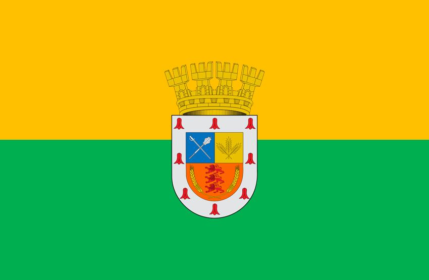 File:Bandera Victoria Chile.png