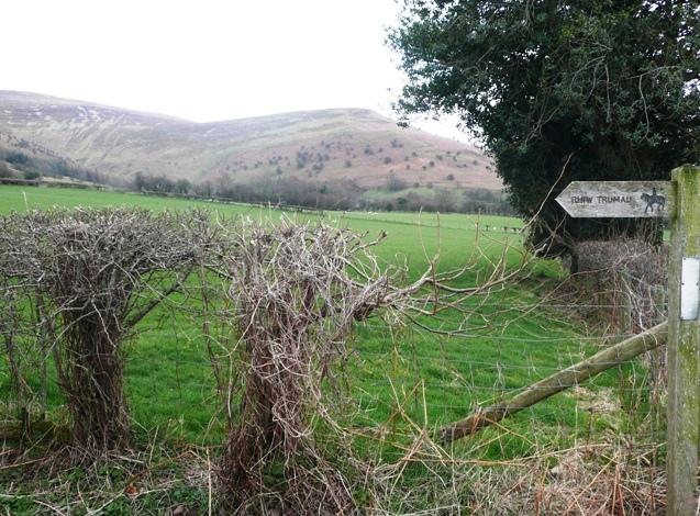 Bridleway to Rhiw Trumau - geograph.org.uk - 743264