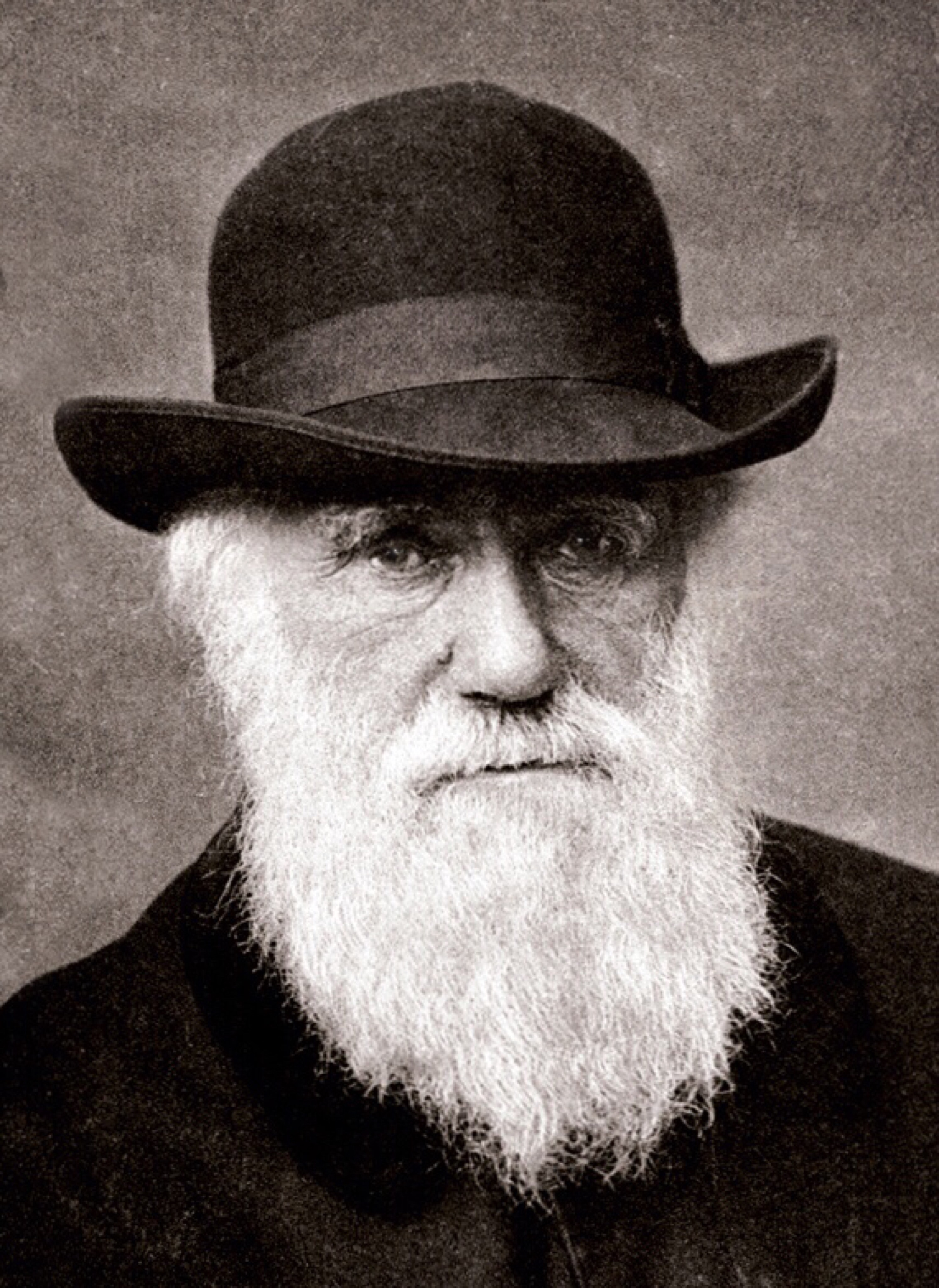 A classic image of Darwin in 1880, still researching and producing numerous books.