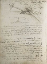 Codex on the Flight of Birds cover