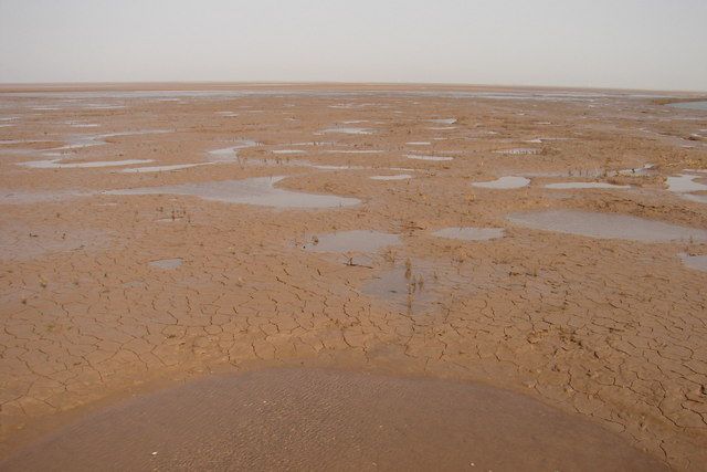 Cracks in the mud - geograph.org.uk - 1271501
