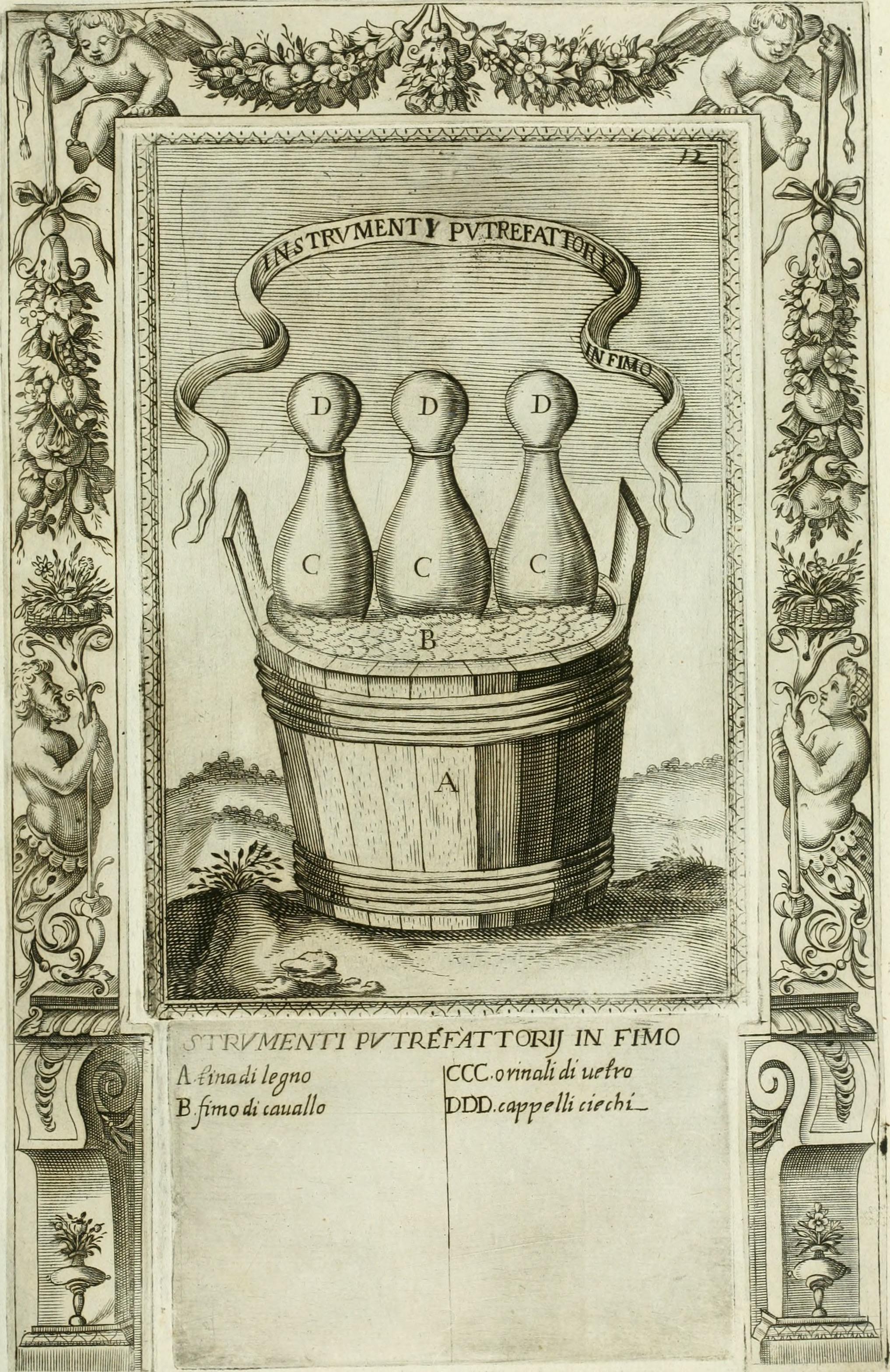 File:Dell'elixir vitæ (1624) (20839954172).jpg