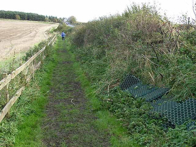 Erosion control on Hadrian's Wall National Trail - geograph.org.uk - 1027879