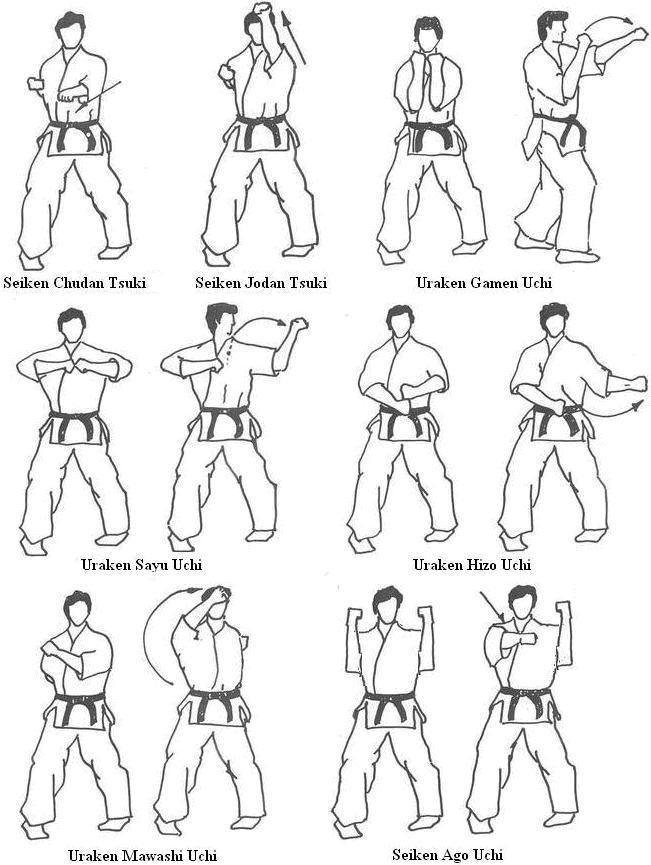 Kyokushin karat full contact kick boxing thai boxing - Allenamento kick boxing a casa ...