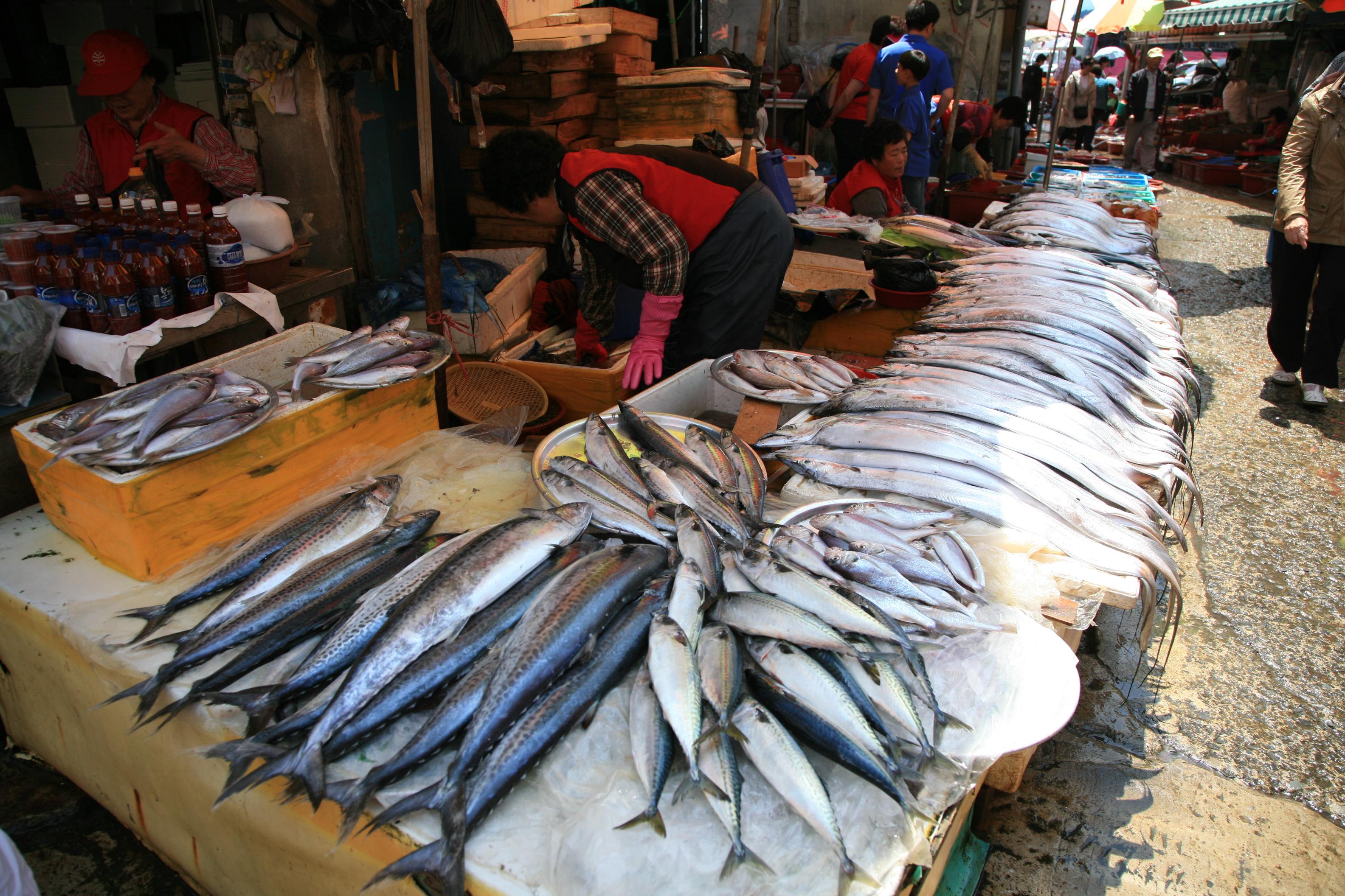 fish market driverlayer search engine