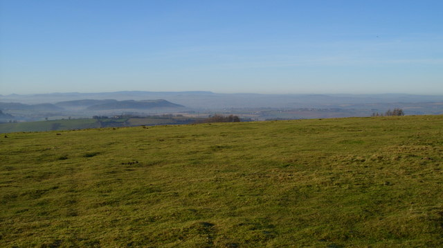 On the top of May Hill - geograph.org.uk - 1076989