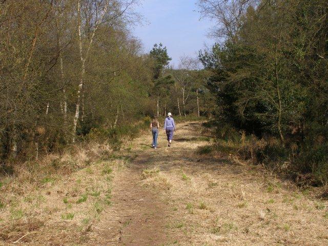 Permissive path on the Roman Road, Bhompston Heath - geograph.org.uk - 398035